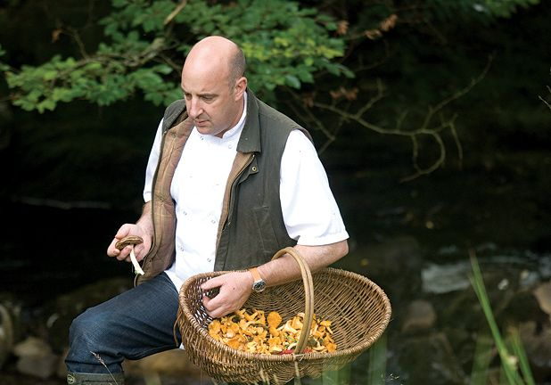 Modern day foraging and gathering