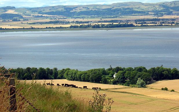 From field to fork - The meat producers of Fife, Scotland