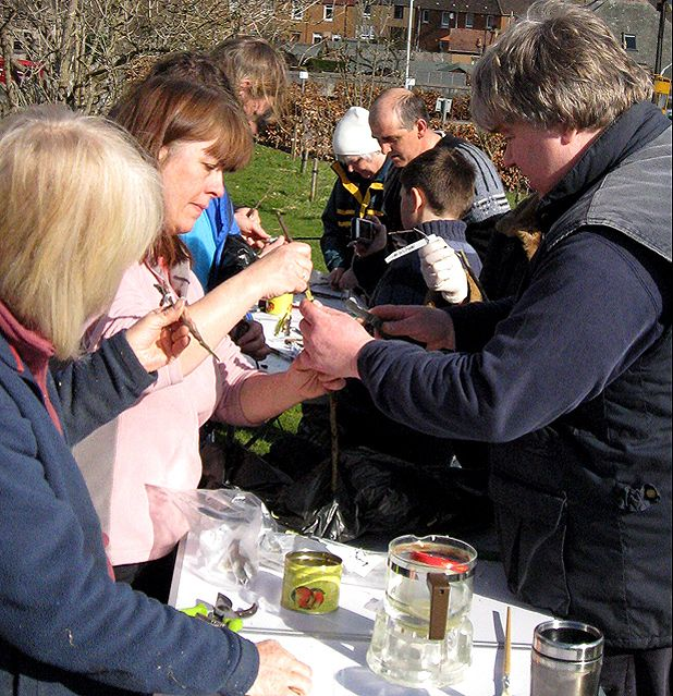 Grafting workshop at Newburgh Community Orchard