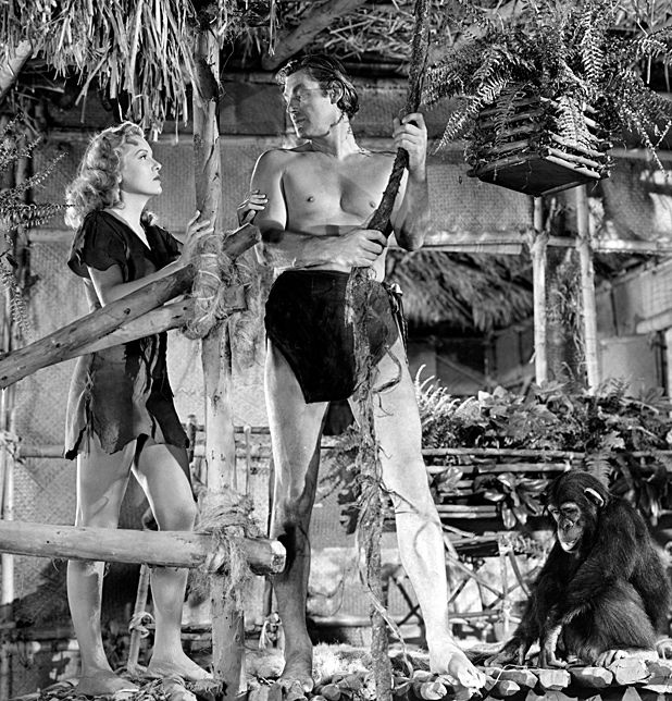 Interview: Scott Tracy Griffin - Tarzan: The Centennial Celebration