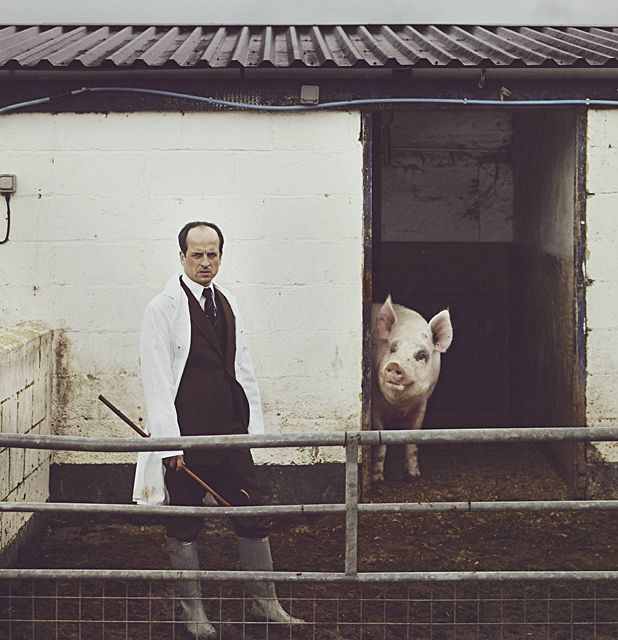 Five reasons to check out Matthew Herbert's 'One Pig'
