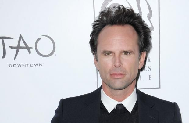 Walton Goggins cast as villain in the new Tomb Raider movie