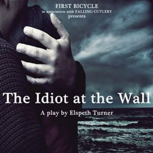 The Idiot at the Wall